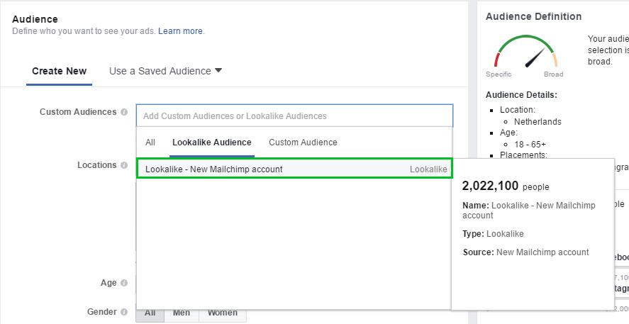 Image of Instagram Lead Ads - Lookalike Audiences